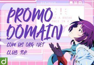 Promo 2 Domain TLD Termurah 1 Tahun