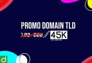 PROMO DOMAIN TLD .COM .NET .ORG