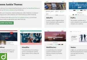 2809660+ Premium Theme Junkie WordPress Original